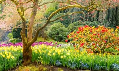 paisaje-de-primavera