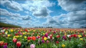primaverapaisajes3_
